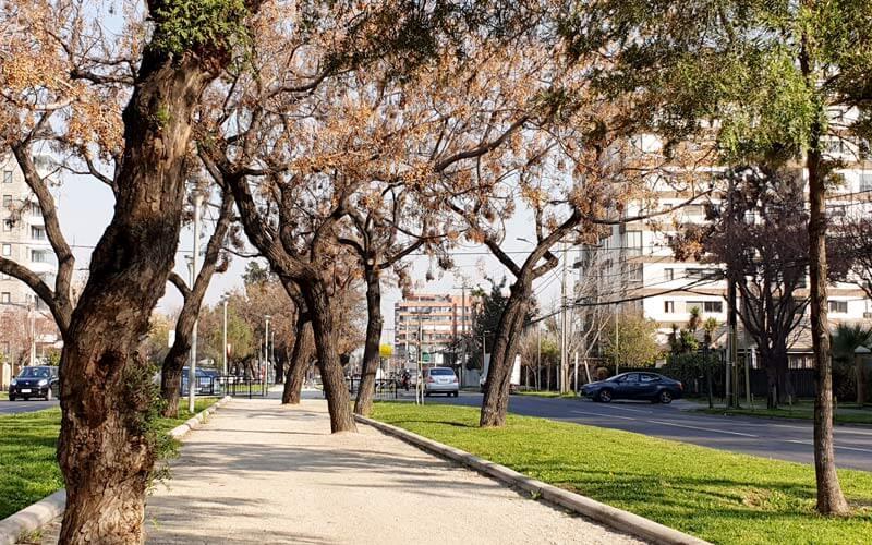 m_parque